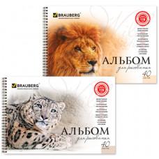 Альбом для рисования, А4, 40 листов, гребень, обложка картон, BRAUBERG, 205×290 мм, «Благородные кошки» (2 вида)