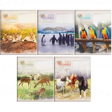 "Тетрадь А5 96 л.кл ArtSpace ""Животные. Wild world card"", ВД-лак"